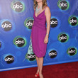 ABC 2005 Summer Press Tour All-Star Party - Stock Photo