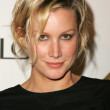 Alice Evans at the Third Annual Entertainment Weekly Pre-Emmy Party. Cabana Club, Hollywood, CA. 09-17-05 - Foto de Stock