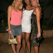 Alana Curry with Traci Bingham and Katie Lohmann at the Jelessy Collection Summer Party. Cabana Club, Hollywood, CA. 08-17-05 — Stock Photo #16654791