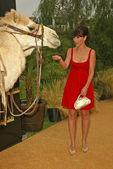 Jennifer Love Hewitt — Stockfoto