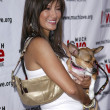 Kelly Hu at Much Love Animal Rescues 4th Annual Celebrity Comedy Benefit. Laugh Factory, Los Angeles,CA. 08-10-05 — Stock Photo