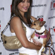 Kelly Hu at Much Love Animal Rescues 4th Annual Celebrity Comedy Benefit. Laugh Factory, Los Angeles,CA. 08-10-05 - Stock Photo