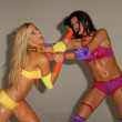 Willa Ford and Adrianne Curry — Foto Stock