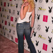 Adrienne Frantz  at the Playboy July 2005 Issue Release Party for Cover Model Joanna Krupa, Montmartre Lounge, Hollywood, CA 06-15-05 - Lizenzfreies Foto
