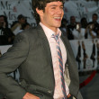 Adam Brody  at the world premiere of Mr. and Mrs. Smith at Mann Village Theater, Westwood, CA 06-07-05 - Zdjęcie stockowe