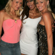 Alana Curry with Traci Bingham and Katie Lohmann at the Jelessy Collection Summer Party. Cabana Club, Hollywood, CA. 08-17-05 — Stock Photo #16727949