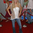 Kellie Peters at World Premiere of Sky High, El Capitan, Hollywood, C07-24-05 — Stock Photo #16734677