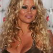 Pamela Anderson — Stock Photo