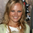 Malin Akerman - Stock Photo