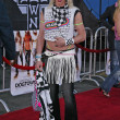 Alexis Arquette at the Lords Of Dogtown World Premiere, Graumans Chinese Theatre, Hollywood, CA 05-24-05 — Stock Photo #16740277