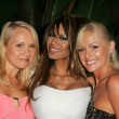 Alana Curry with Traci Bingham and Katie Lohmann at the Jelessy Collection Summer Party. Cabana Club, Hollywood, CA. 08-17-05 — Stock Photo #16746205