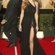 Stock Photo: 11th Annual Screen Actors Guild Awards - Arrivals