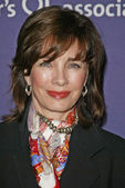 Anne Archer — Stock fotografie