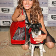 The Jeep Yappy Hour And Febreze Pet Fashion Show — Photo