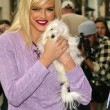 ������, ������: Anna Nicole Smith