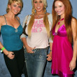 Tamie Sheffield, Mary Carey and Phoebe Price — Stock Photo