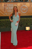 11th Annual Screen Actors Guild Awards - Arrivals — Stock Photo