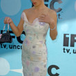 20th IFP Independent Spirit Awards - IFC After Party — Stock Photo