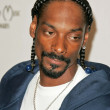 Постер, плакат: Snoop Dogg