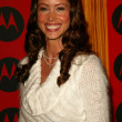Shannon Elizabeth — Stock Photo #17066813