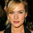 Kate Winslet at the 10th Annual Critics Choice Awards, Wiltern Theater, Los Angeles, CA 01-10-05 — Stock Photo #17075873