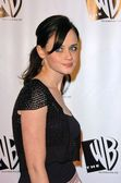 Alexis Bledel at the 2005 WB Network All Star Party, Warner Bros. Studio, Burbank, CA 01-22-05 — Stock Photo