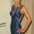 Stock Photo: Kelly Lynch at Saks Fifth Avenues Unforgettable Evening , Beverly Wilshire, Beverly Hills, C03-01-05