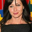 Shannen Doherty — Stock Photo #17095393