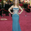 Stok fotoğraf: 77th Annual Academy Awards