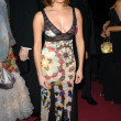 Alanna Ubach at the The 15th Annual Night of 100 Stars Oscar Gala - Arrivals, The Beverly Hills Hotel, Beverly Hills, CA 02-27-05 - ストック写真