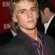 Aaron Carter at the 2005 EMI Post Grammy Bash, Beverly Hills Hotel, Beverly Hills, CA, 02-13-05 — Stock Photo