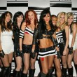 Постер, плакат: The Pussycat Dolls