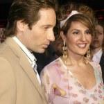 ������, ������: David Duchovny and Nia Vardalos
