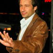 david duchovny — Stock Photo