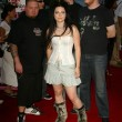 Foto de Stock  : Amy Lee and Evanescence