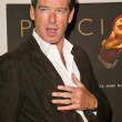 Постер, плакат: Pierce Brosnan
