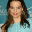 Kimberly Williams-Paisley — Stock fotografie #17234249