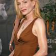 Stephanie Niznik — Stock Photo #17235679