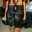 Постер, плакат: Nicky Hilton and Paris Hilton
