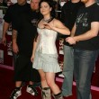 Постер, плакат: Amy Lee and Evanescence