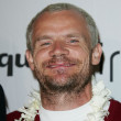 Stock Photo: Flea