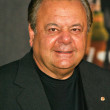 Paul Sorvino — 图库照片