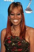 Yolanda Adams at the 37th Annual NAACP Image Awards. Shrine Auditorium, Los Angeles, CA. 02-25-06 — Stock Photo