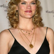 Missi Pyle at the Starlight Starbright Childrens Foundation A Stellar Night Gala Honoring Dakota Fanning. The Beverly Hilton Hotel, Beverly Hills, CA. 03-31-06 — Stock Photo