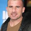 Stock Photo: Dominic Purcell on red carpet at premiere of Ice Age Meltdown. Graumans Chinese Theatre, Hollywood, CA. 03-19-06