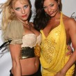 Постер, плакат: Aza and Candice Michelle at the party to celebrate the April 2006 Playboy Cover featuring Candice Michelle Basque Hollywood CA 03 14 06