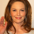 Diane Lane at Unforgettable Evening Benefit for EIFs WomCancer Research Fund. Regent Beverly Wilshire Hotel, Beverly Hills, CA. 03-01-06 — Stock Photo #17340881
