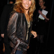 Sheryl Crow at Rock and Republics Fall 2006 Fashion Exhibition. Sony Studios, Culver City, CA. 03-20-06 — Stock Photo
