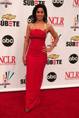 Ana Ortiz at the 2007 Alma Awards. Pasadena Civic Auditorium, Pasadena, CA. 06-01-07 — Stock Photo