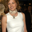 Lucy Lawless - Stock Photo